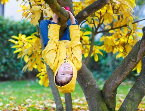 Observeren en begeleiden van hoogbegaafd kind